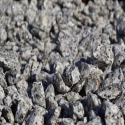 Grys granitowy dalmatyńczyk Piotrków Trybunalski